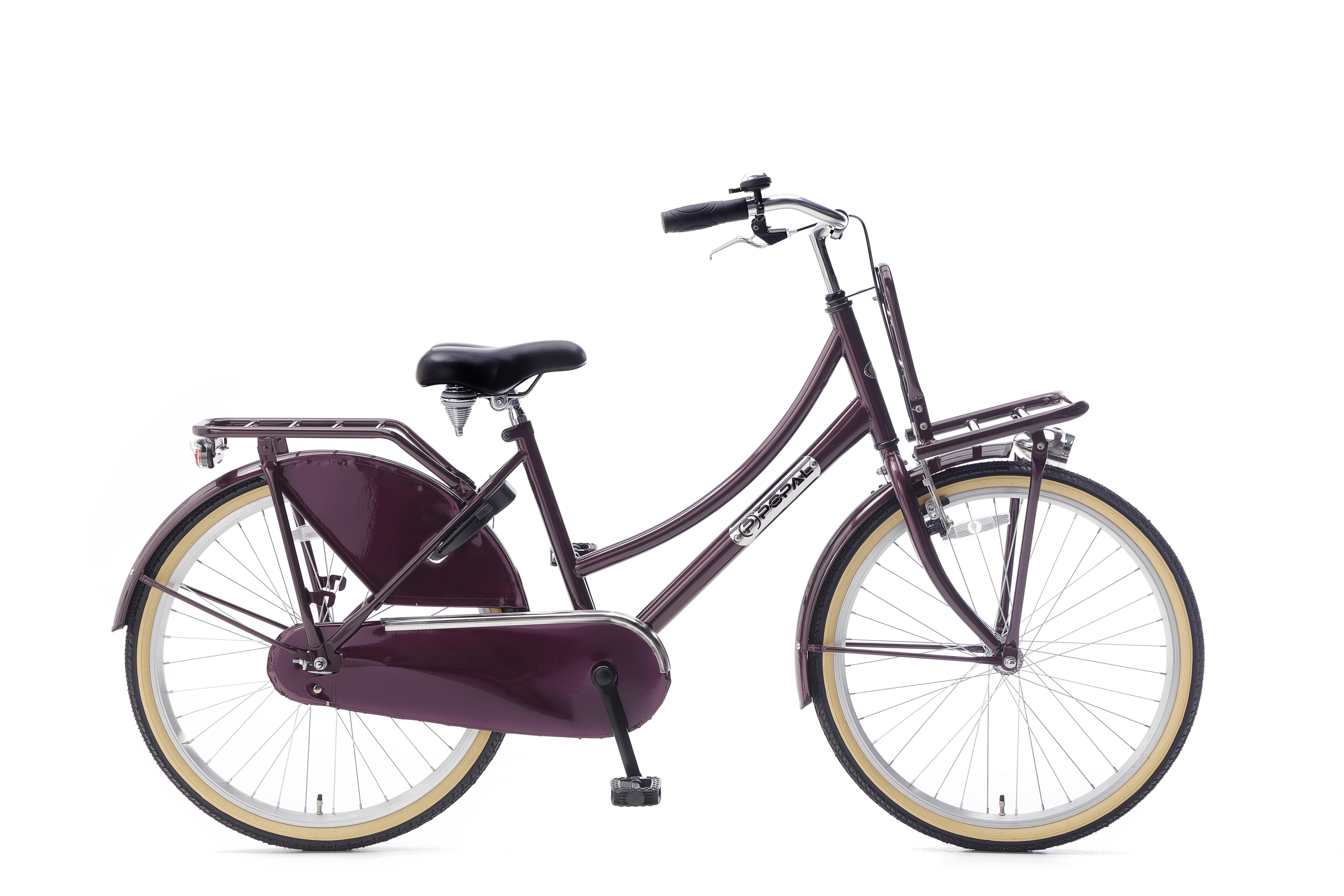 https://fietsenhalsteenwijk.files.wordpress.com/2019/01/dailey-dutch-paars.jpg
